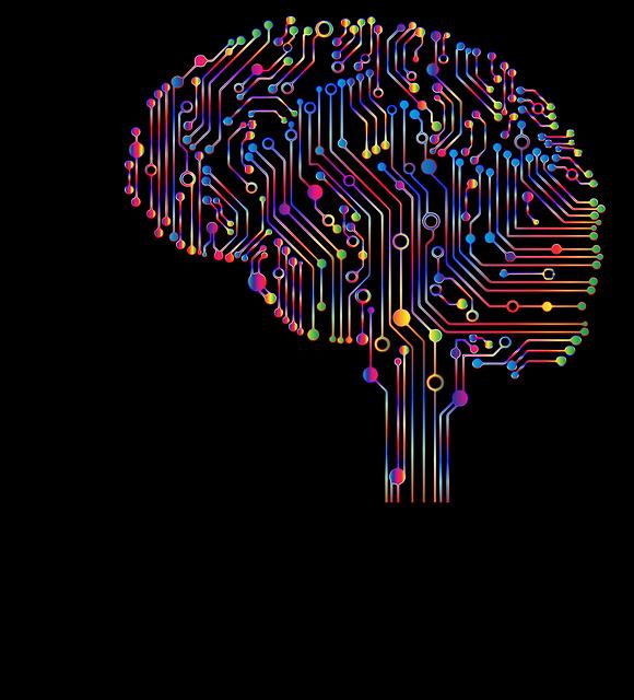 brain-4863428_640